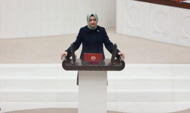 24 Haziran Genel Seçimlerinde AK Parti İstanbul Milletvekili seçilen Bakan Kaya, TBMM Genel Kurulunda yemin etti